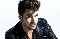 Adam Lambert und genau sein Publikum