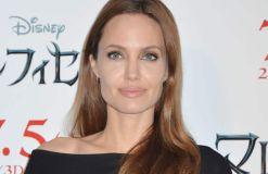 Angelina Jolie und Brad Pitt: Die Flitterwochen-Therapie