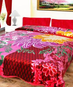 Avioni Mink Double Bed Winter Blankets Shiny Floral Very Soft And Warm