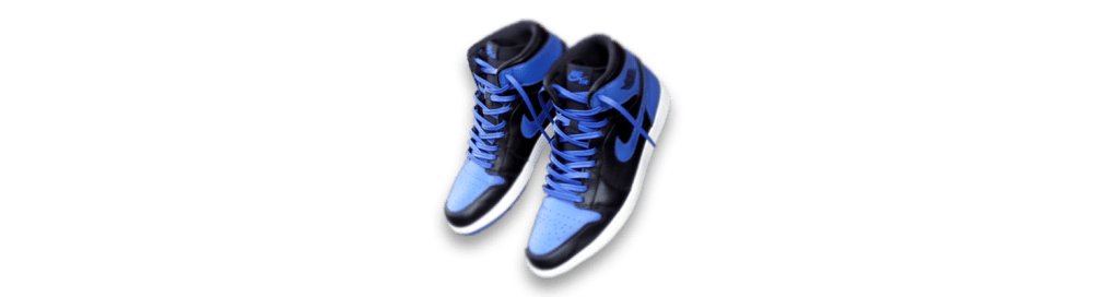 royal blue leather shoe laces in jordans