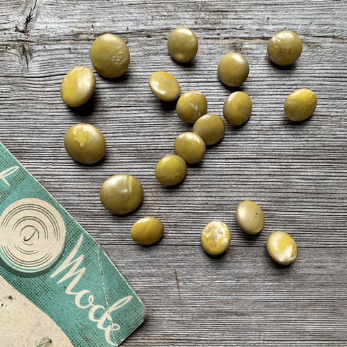 Ochre Vintage French Buttons at Loop London