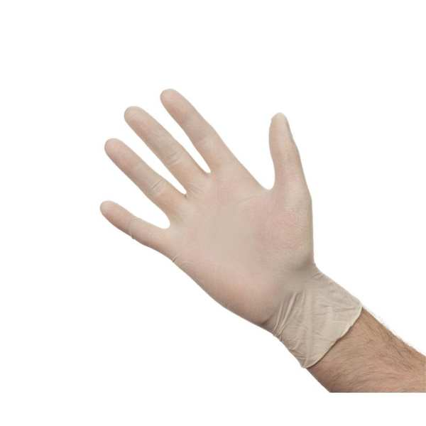 Latex Gloves - Powder Free - Large - Box 100