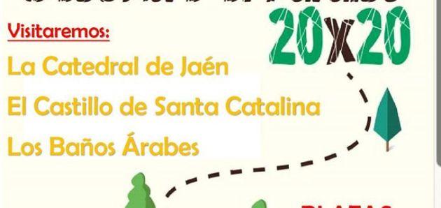Visita guiada y gratuita a Jaén