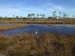 big lagoon st park8