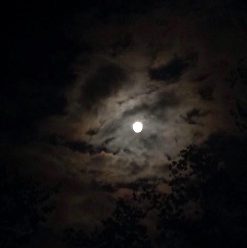 randomgram moon