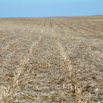 central-illinois-selling-61-tillable-acres