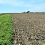 midwest-farm-land-sale_illinois-carter-trust_loranda-group