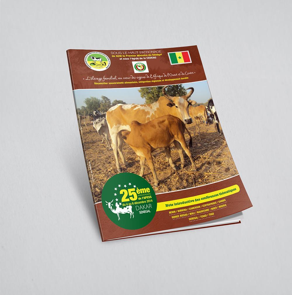 1-Brochure Note thématique -  APESS