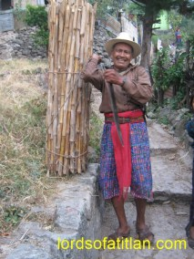 Don Gaspar carrying cane, to his house in Santa Catarina Palopó. Before, they constructed many homes of cane, but today cane´s use is mostly for fencing.