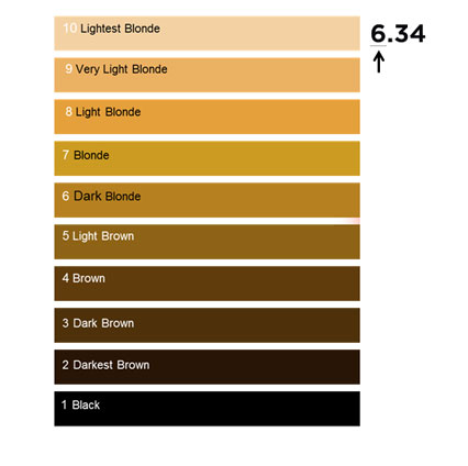 Best 20 Loreal Hair Color Chart Ideas On Pinterest Of