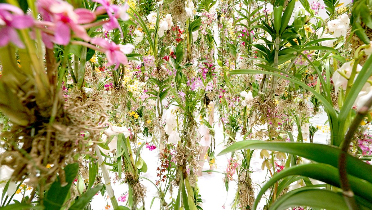 Floating-Flower-Garden_04-1