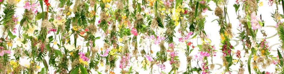 2,300 Suspended Flowers