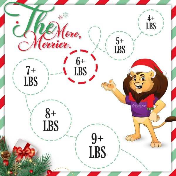 6-pound-christmas-gift-set-lorentanuts Com Holiday Gifts