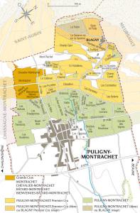 Puligny-Montrachet: Kort (vin)