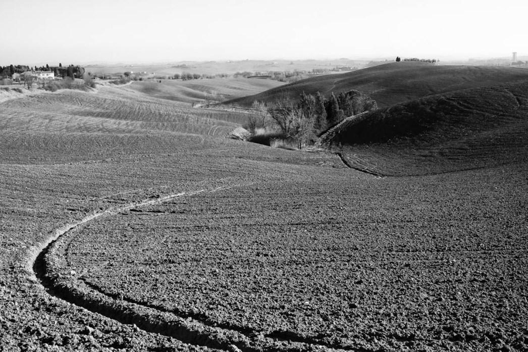 Paesaggio in Bianco e Nero su campo arato