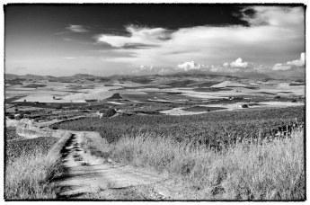 Paesaggio siciliano in Bianco e Nero