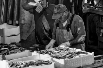 Mercato del pesce a Trapani