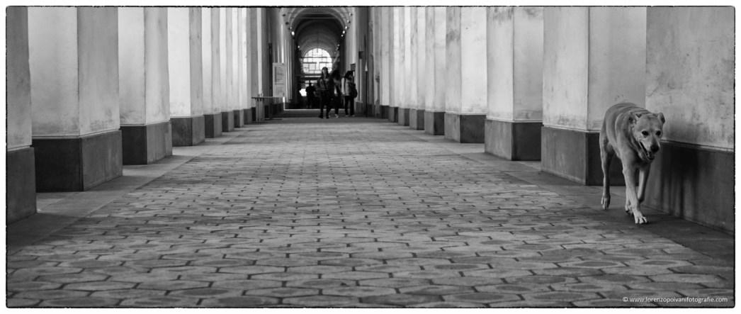 Universita' Degli Studi Di Catania - Facolta' Di Lettere - 2