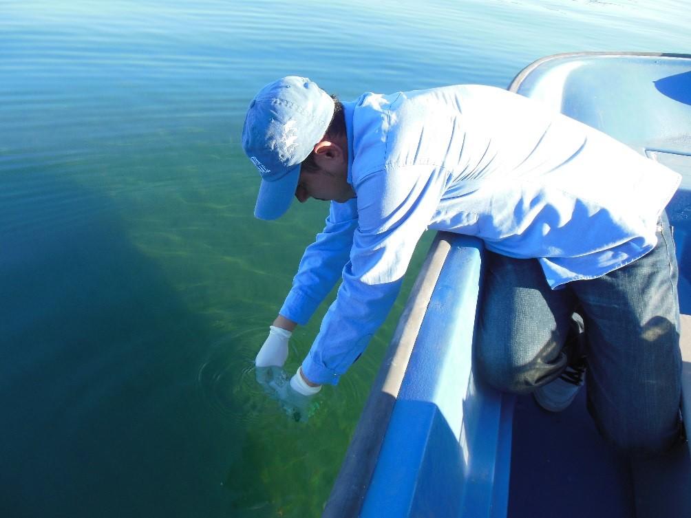 Monitoring Loreto's Seashore Water Quality