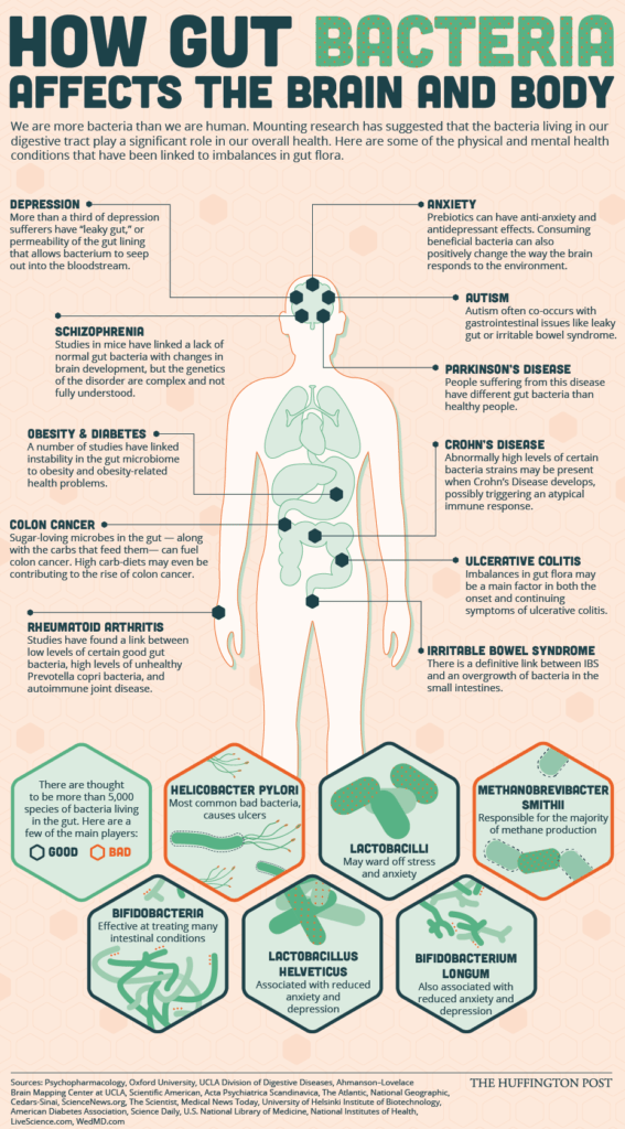 Chart shows how gut bacteria affect the brain and body through the gut-brain axis.