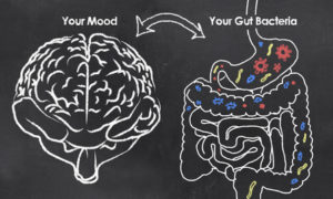 Chalk drawing of correlation between gut microbiome bacteria and your mood.