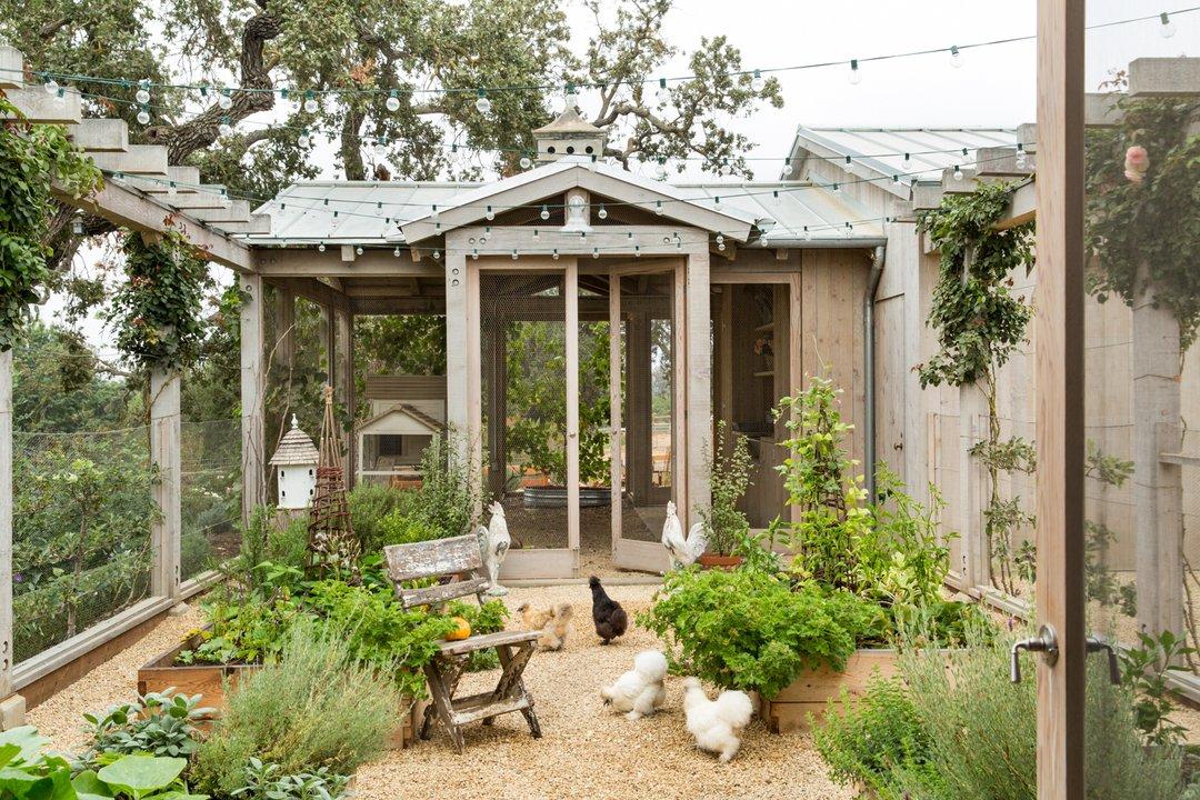 Design an Edible Garden
