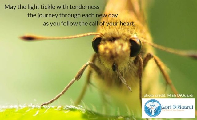 May the light tickle with tenderness the journey through each new day as you follow the call of your heart.