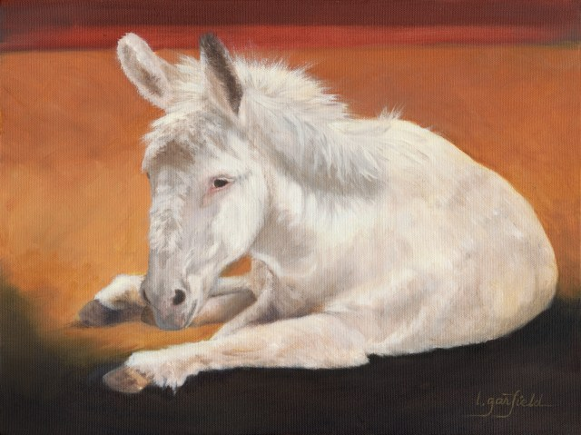 Giving Back: this painting was donated to Humanity for Horses, a 501(c)(3) nonprofit organization, and a portion of the proceeds of the sale of any prints will benefit them too. Donkey, portrait of white donkey lying down. Original Oil Painting by artist Lori Garfield, Medford Oregon