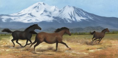 Paintings by Lori Garfield : Running for Joy, painting of three horses running with snow capped mountains in background. Original Oil Painting by artist Lori Garfield, Medford Oregon