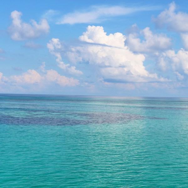 Belize Near Big Blue Hole