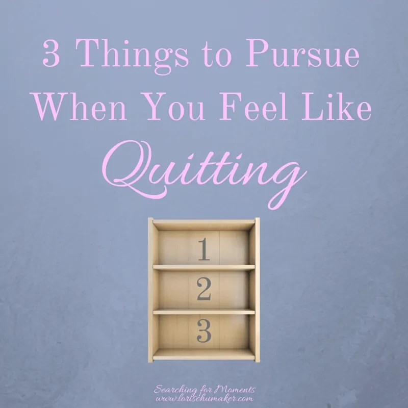 Have you hit a roadblock? Do you feel like quitting? Before you do, pursue these 3 things!
