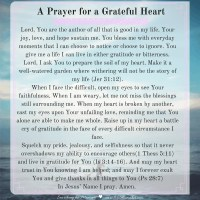 A Prayer for a Grateful Heart {#MomentsofHope Link-Up}