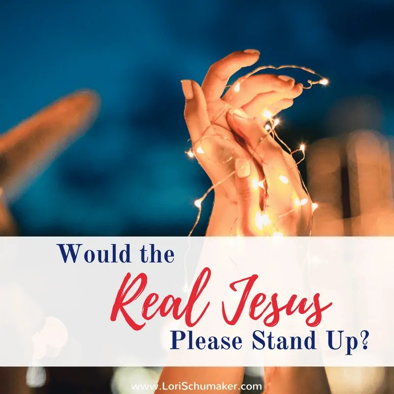 Would the Real Jesus Please Stand Up?  {#MomentsofHope Link-Up + Stolen Jesus Book Review and Giveaway}