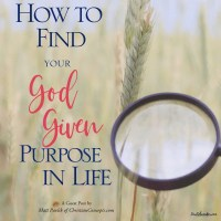How to Find Your God Given Purpose in Life