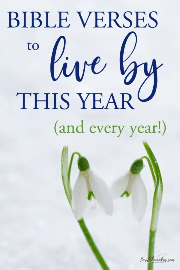 A list of powerful Bible Verses to live by this year and every year! Jumpstart growth in your faith life with these verses and the Surrendered Hearts Manifesto. | Bible Verses for Strength #bibleverses #bibleversestoliveby #bibleverses #bibleversesforwomen #bibleversesforlife #hope #grace #lifeguide #lifepurpose #growinginfaith #scriptureresources #findingscripture #scriptureaboutlivngwell #bibleversesforstrength