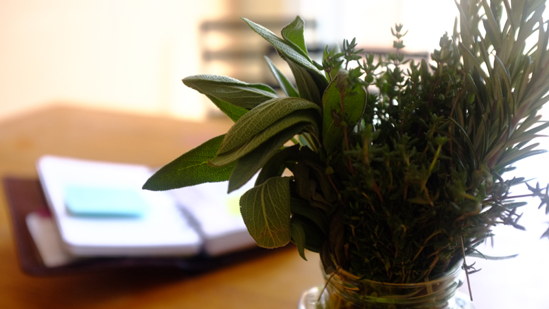herbs and notebook