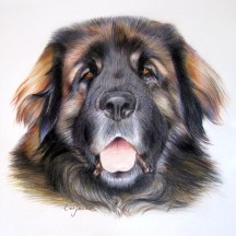 portrait-Benson