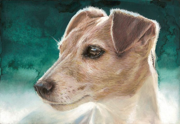 Jack Russell chien gouache
