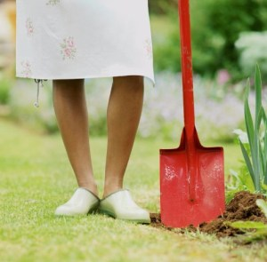 Get ready to laugh and cry with my article on Weeding isn't for Wimps! What weeds are you letting grow in your life?