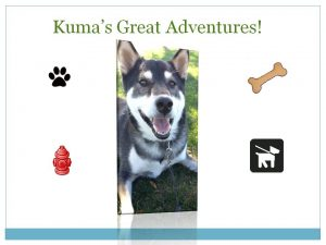 Kuma shares his GREAT adventures on his blog. Read and discover something new becuase you never know where Kuma will go!
