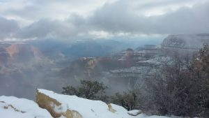 Cold, wind, and snow didn't stop Kuma from adventuring at the Grand Canyon.