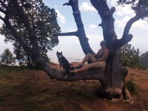 Kuma and his mom just hanging in a tree