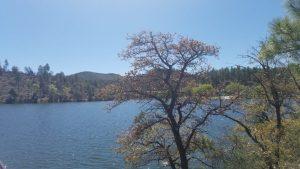 A beautiful day at Lynx Lake