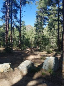 View from Powell Springs campground
