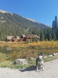 Kuma at Taos Ski resort