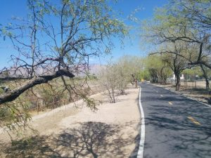 Biking in Tucson