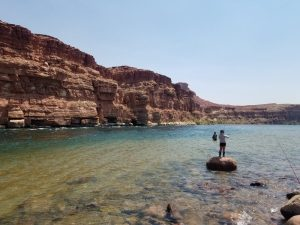The botton of the Grand Canyon