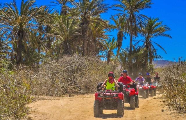 Amigos Candelaria ATVs
