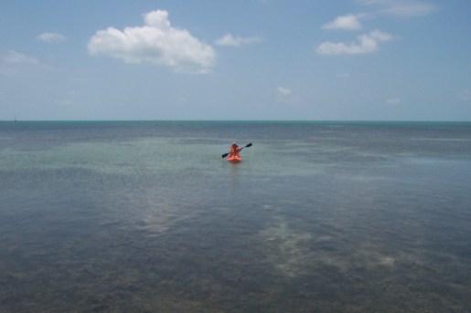 Kayak en Key Largo John Pennekamp
