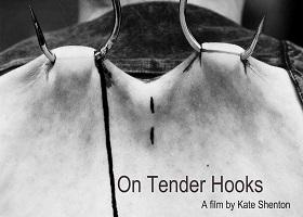 on_tender_hooks_documentario_shenton
